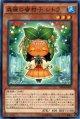 【ノーマル】森羅の蜜柑子 シトラ