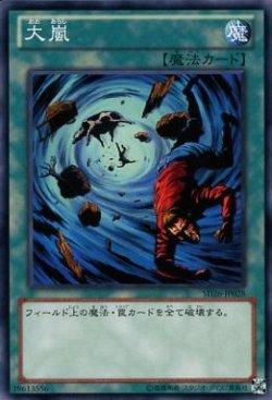 画像1: 【ノーマル】大嵐