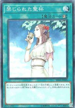 画像1: 【ノーマル】禁じられた聖杯