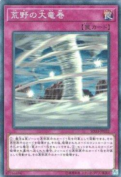 画像1: 【ノーマル】荒野の大竜巻